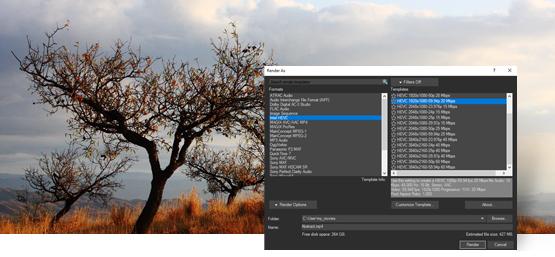 视频剪辑软件 Vegas Pro 17 v17.0.0.353 中文破解版