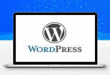 WordPress主题插件 门户视频主题LoveVideo 源码-久久鱼塘