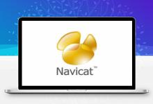 PremiumSoft Navicat Premium v12.1.20中文破解版-久久鱼塘